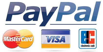 Paypal Karte Bestellen.Zahlungsmethoden Goeticket De